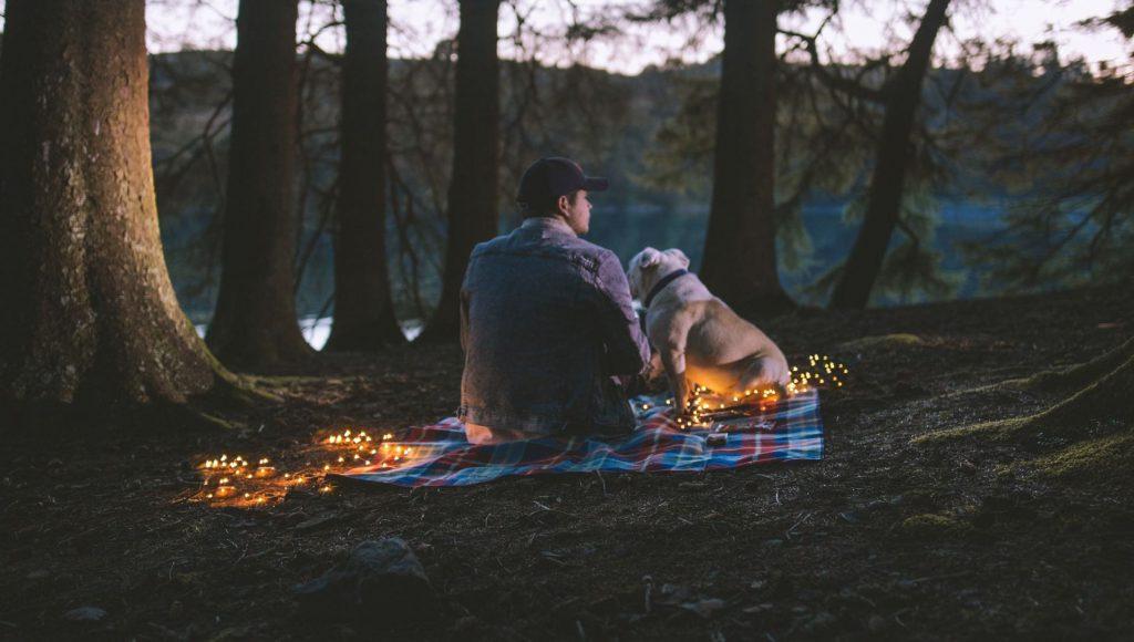 dierencommunicatie-gesprek
