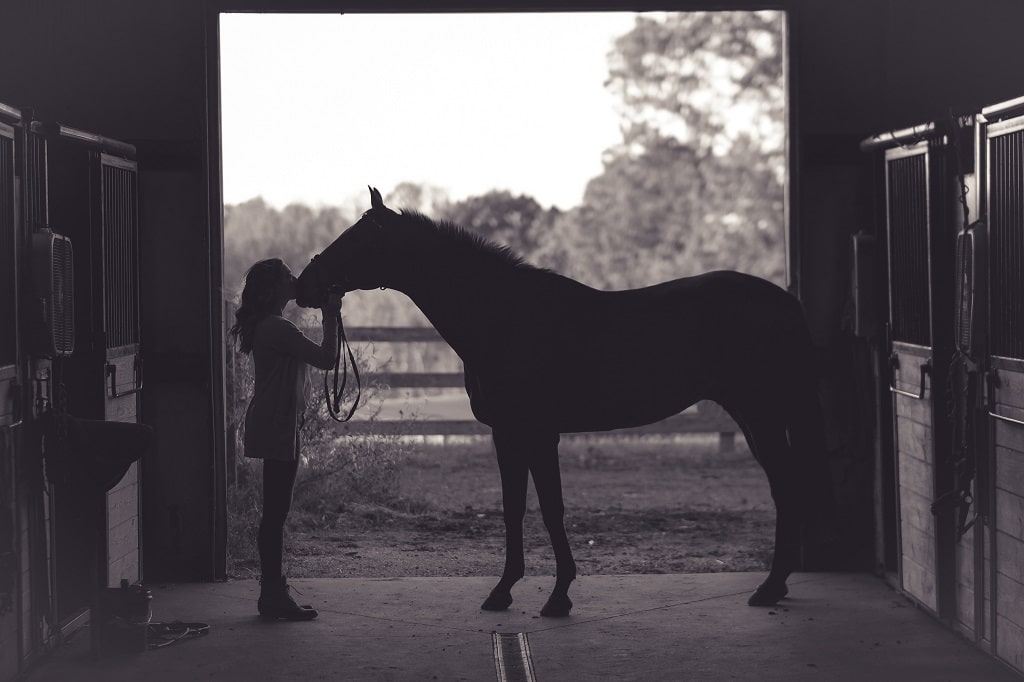 paard-en-mens